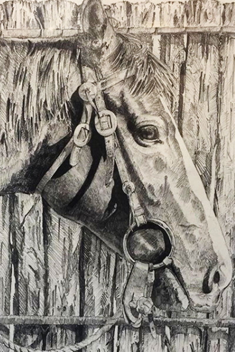custom pencil drawing of a horse