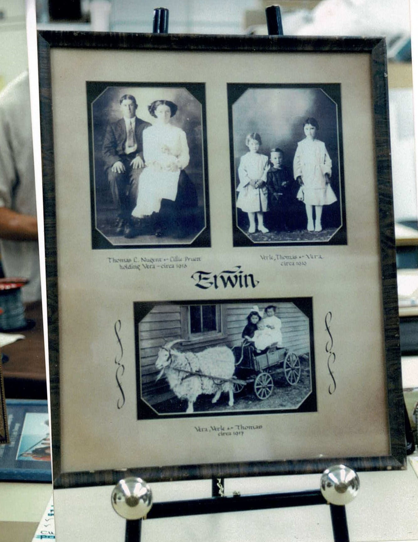 vintage family tree photos kept in an archival framing style photo frame